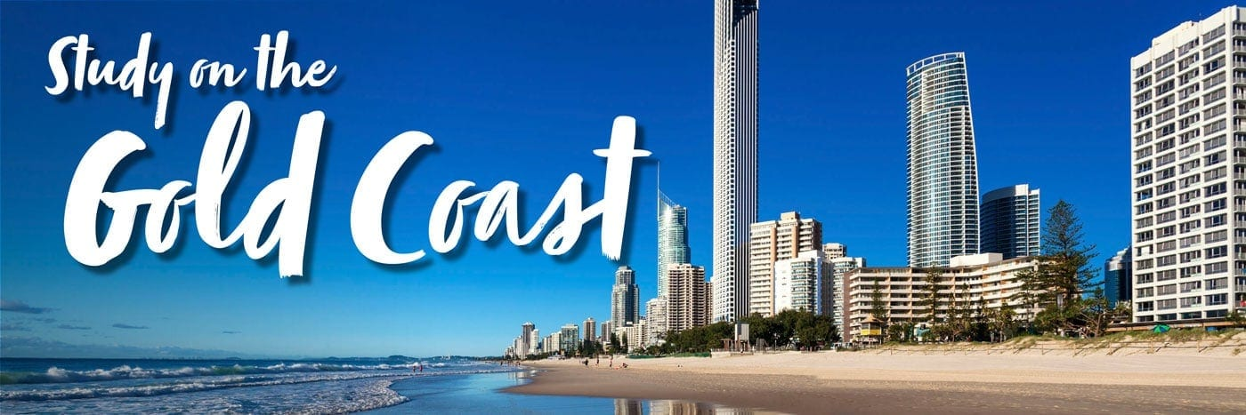 Study-on-the-Gold-Coast-Web-Banner